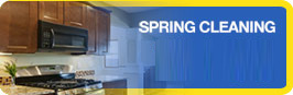House Spring Cleaning Service
